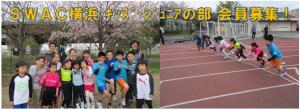 SWAC横浜 - キッズ・ジュニアの部会員募集!